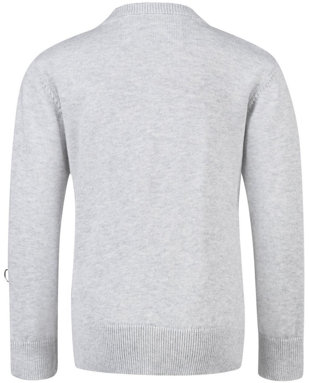 Pullover - Blassgrau - Lichtgrijze trui